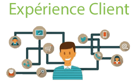 Experience client web